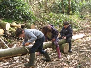 Children de-barking trees